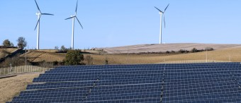 Experts Published A Scathing Rebuttal To The Left's Favorite Green Energy Study