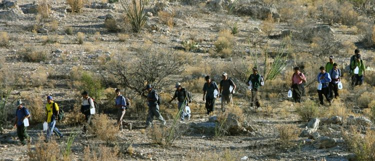 Mexican immigrants walk in line through the Arizona desert near Sasabe, Sonora state, in an attempt to illegally cross the Mexican-US border, 06 April 2006.  While thousands of mexicans try to cross the border daily from Sasabe city, the US Senate reached a breakthrough agreement on a legislation that would grant legal residency status to millions of undocumented workers in the United States.  Getty/AFP PHOTO/ Omar TORRES