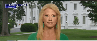 Kellyanne Conway: 'If I Were Shot and Killed Tomorrow Half Of Twitter Would Explode In Applause' [VIDEO]