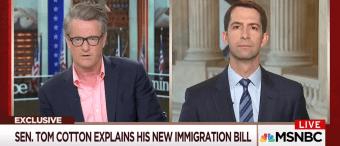 Tom Cotton Says Lindsey Graham Is 'Uninformed' On Immigration [VIDEO]
