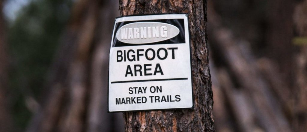 Man Claims To Have A Photo Of A Sasquatch In Michigan