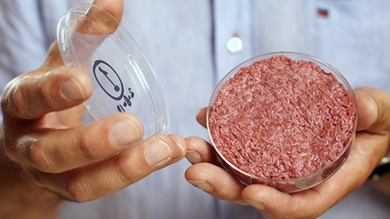 Resultado de imagen de Carne de laboratorio: los avances científicos se acercan