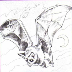 Una creatura molto insolita e incredibile, e per disegnarla per approfittare del prossimo schema di disegno graduale, che è adatto per disegnare insieme al bambino, anche se può far fronte al modello e indipendentemente. All'inizio, disegniamo un cerchio - la testa e il suo corpo, poi disegniamo una linea di future orecchie e ali. Nella fase successiva, disegniamo un frutto carino, finiamo le orecchie e le ali delle spalle. Vernice nera o marrone del colore del disegno pronto.
