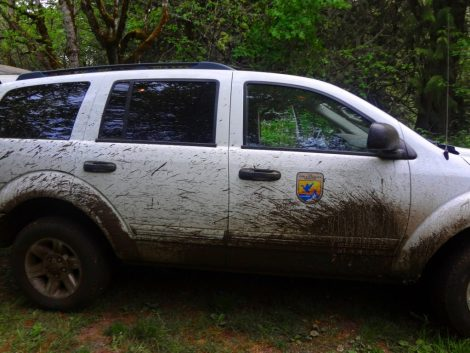 THE Mighty Muddy Mouse Mobile. Mud even got on top of the car!