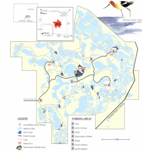 A general BLM map of the Blanca Wetlands by pond and main roads