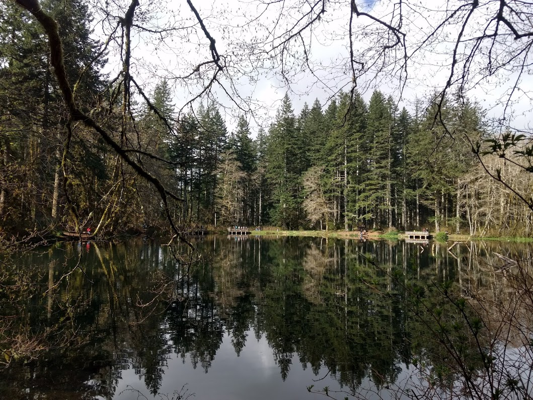 Hebo Lake Campground at the Siuslaw National Forest provides nice pick-nick tables and space for family fishing day
