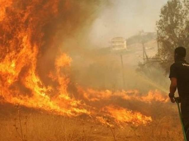 Image result for πυρκαγια σητεια