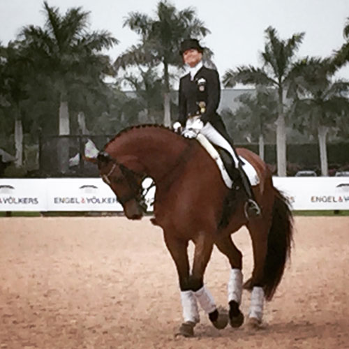 Dressage Nations Cup At Global Dressage Festival In