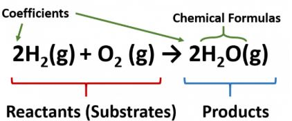 Spice of Lyfe: Chemical Equation Reactants And Products ...