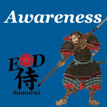 ED-Shi-Ep22-Awareness