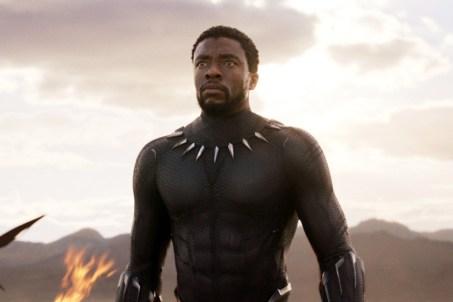 Resultado de imagen de black panther chadwick boseman