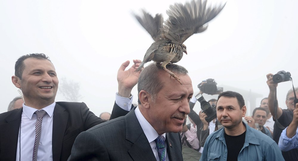 File Photo: Turkish President Tayyip Erdogan, accused by critics of an increasingly authoritarian style of government, has argued that the country would be better served by a strong presidential system
