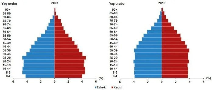 Population pyramid by age, 2007 and 2019