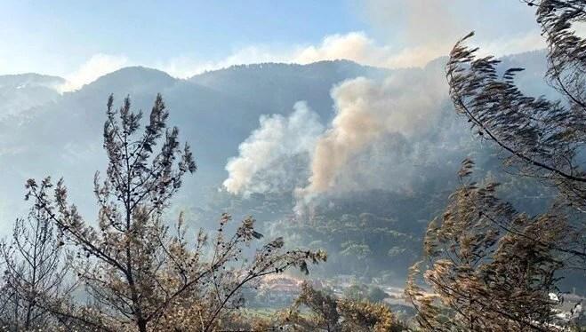 Antalya, Adana, Mersin, Muğla ve Osmaniye'de orman yangınları 19