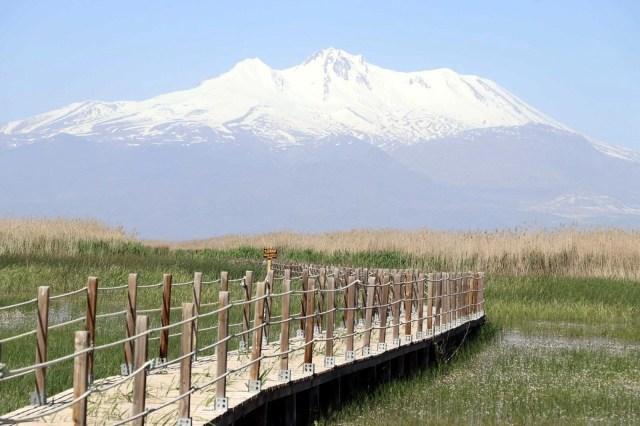 Kayseri'de bozkırın ortasındaki cennet vaha: Sultan Sazlığı - 38
