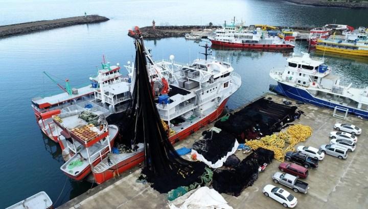 Av sezonu sona eriyor: Balıkçılar ağlarını erken topladı