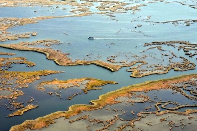 Labirent sazlıkları ile turistlerin gözdesi: Dalyan Kanalı - 16