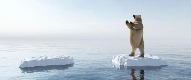 İklim değişikliği ve çevre kirliliği denizlerdeki tüm memeli türlerin yüzde 25'ini yok etmek üzere - 6