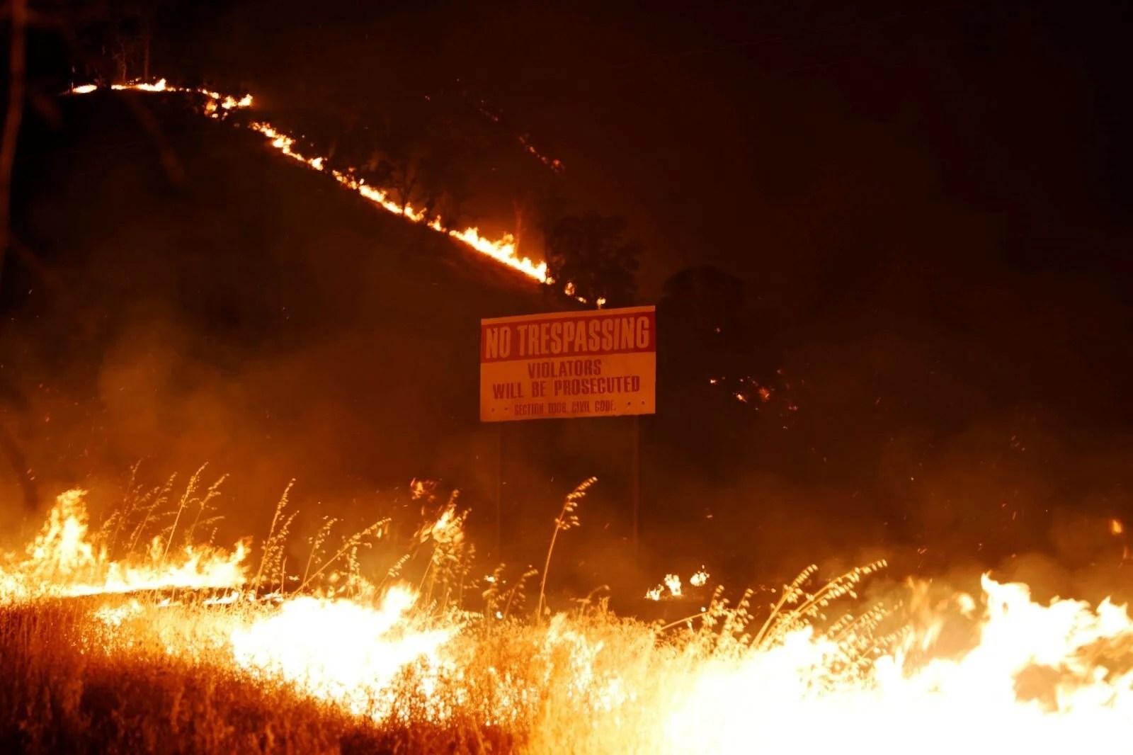 California'da 8 bin kilometrekare alan yandı, rekor kırıldı - 1