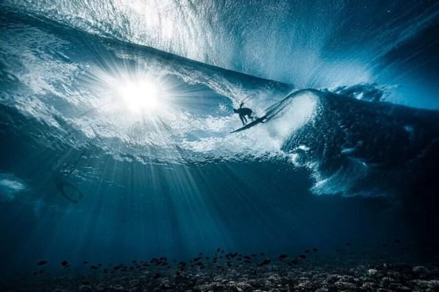 Okyanus Fotoğrafları Yarışması'nın finalistleri belli oldu - 20
