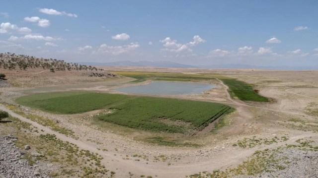 May Barajı'nda korkutan görüntü: Sular çekildi, binlerce balık telef oldu - 14