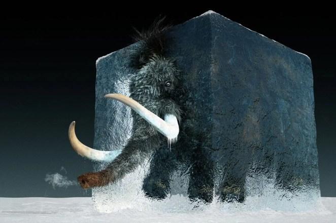 10 bin yıl önce yok olan yünlü mamutlar yeniden doğacak - 5