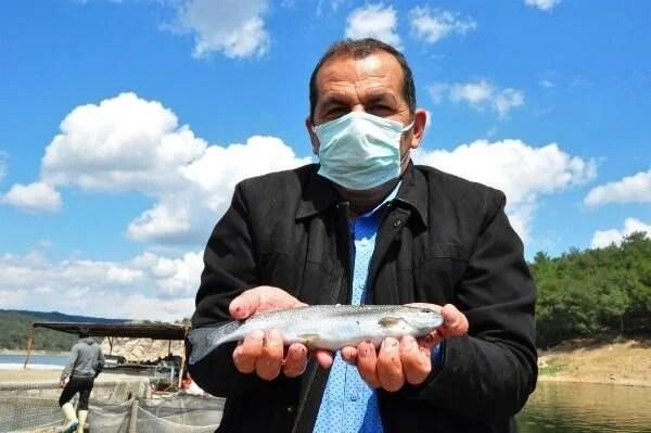 Denizi olmayan Manisa'dan dünyaya balık ihracı - 4