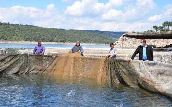 Denizi olmayan Manisa'dan dünyaya balık ihracı - 12