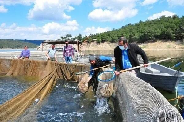 Denizi olmayan Manisa'dan dünyaya balık ihracı - 2