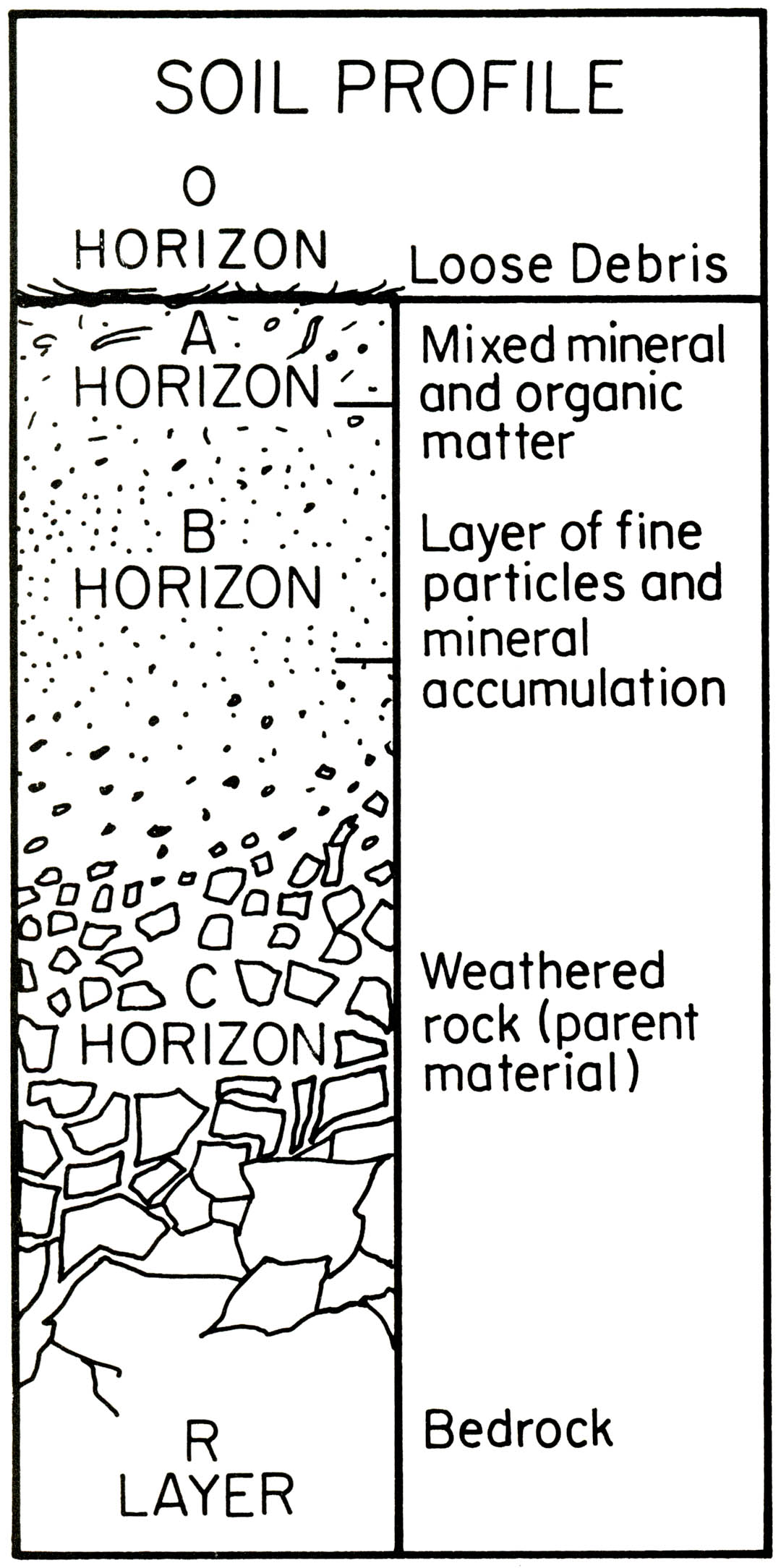 Soil Profile Diagram Without Label Pictures To Pin On