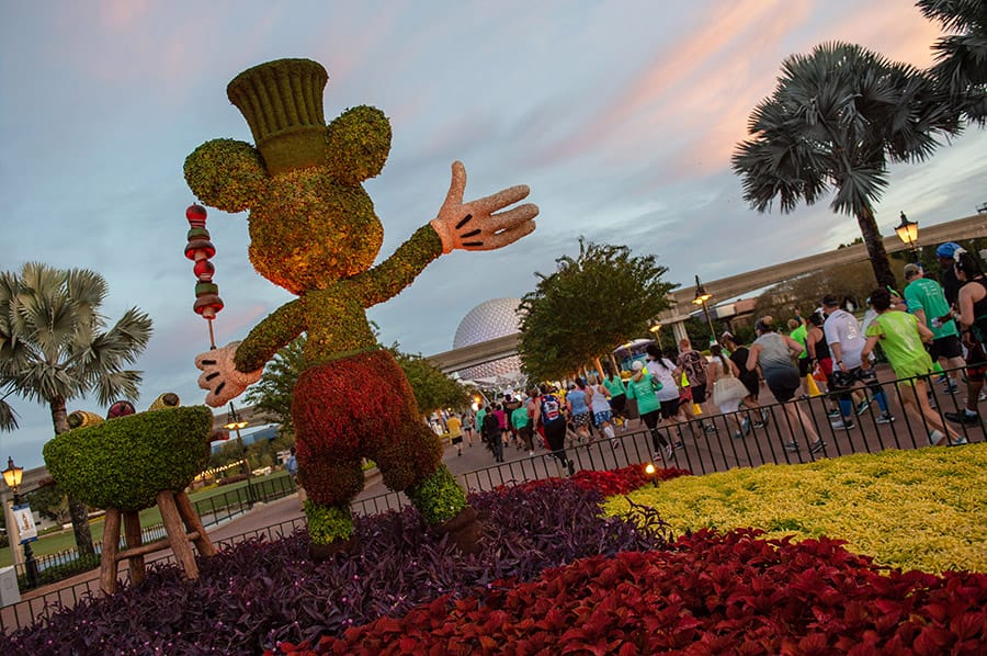 Disney Wine & Dine Half Marathon participants running past a Mickey topiary at Epcot