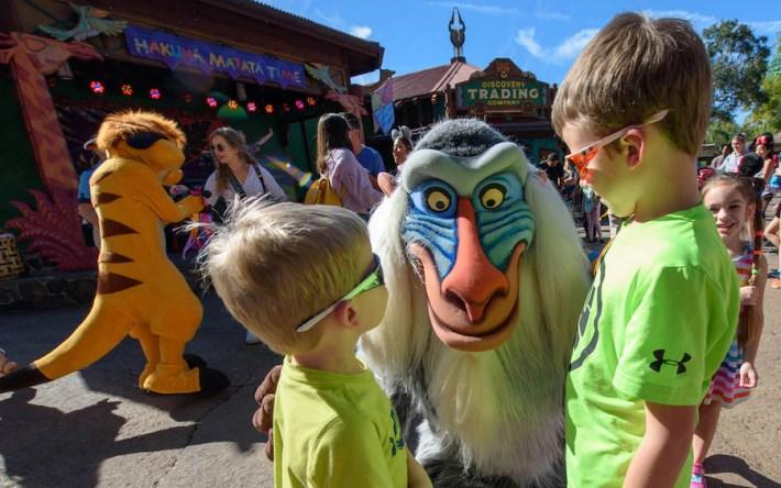 Hakuna Matata Dance Party at Disney's Animal Kingdom