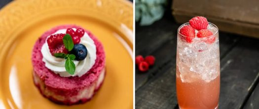 Offerings from Berry Patch Marketplace for Disney California Adventure Food & Wine Festival