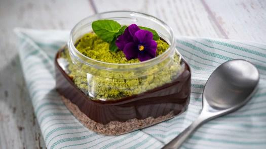Chocolate Pudding Terrarium from Trowel & Trellis Outdoor Kitchen for the 2020 Epcot International Flower & Garden Festival