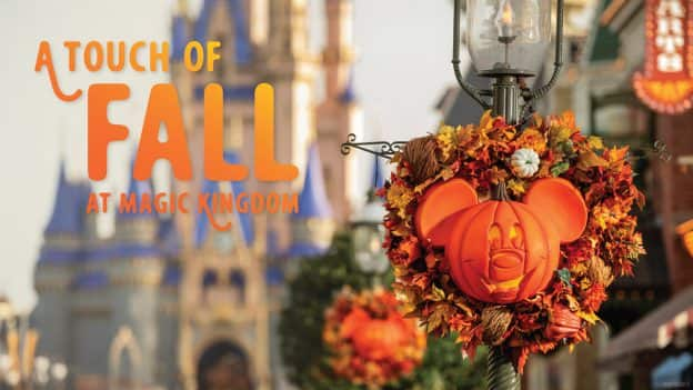Fall decor on Main Street U.S.A.