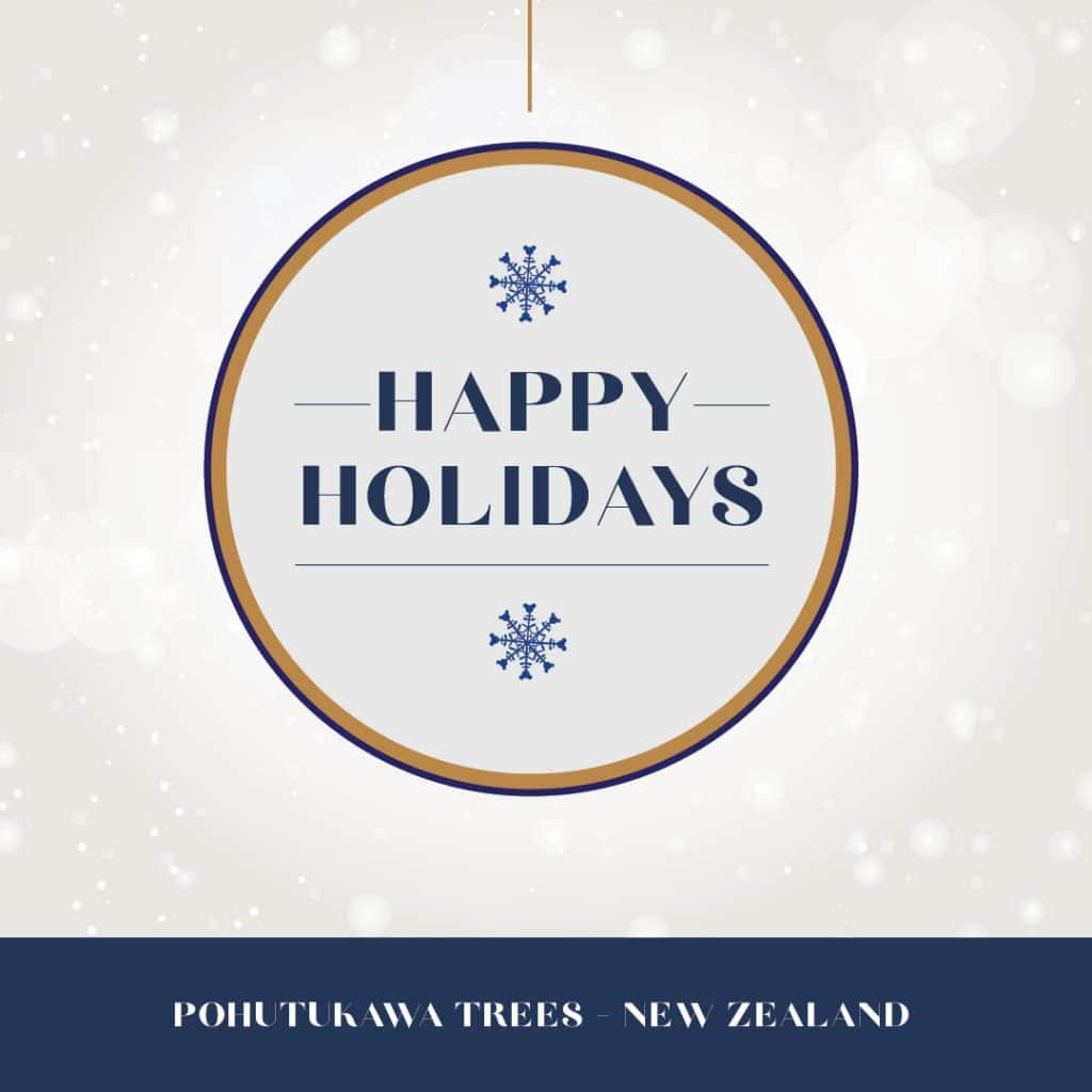 Happy holidays from New Zealand graphic
