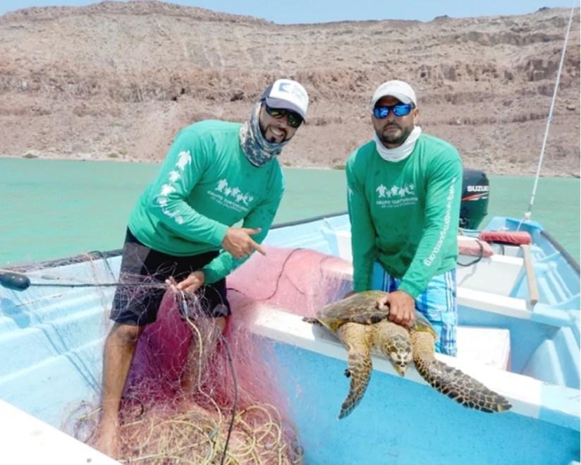 Baja fishermen Juan and Felipe Cuevas,Rehabilitated Sea Turtles