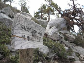 Baldy Bowl Trail marker