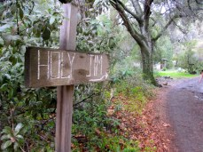 Sign to Holy Jim Trailhead