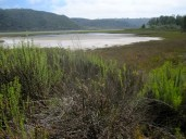 Beautiful Batiquitos Lagoon is a rare saltwater lagoon in North San Diego County