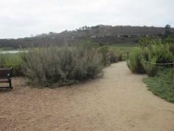 An optional spur trail