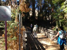 Crossing the bridge on the Wildcat Loop