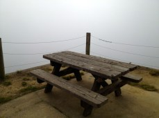 Picnic table near the summit of Mt. Livermore