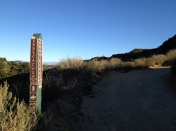 Intersection of Gnatcatcher and East Ridge Trails