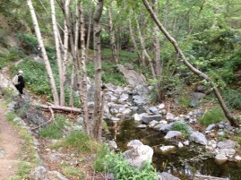 Much of the trail runs very near this small creek.