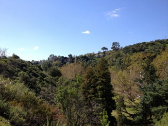 Brush Canyon