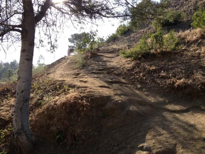 Hero Trail in Runyon Canyon
