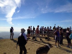 A busy day atop Mt Hollywood