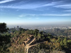 En route to Mt. Hollywood