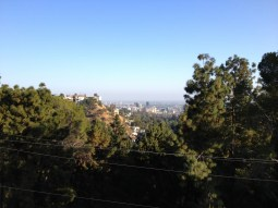 Views of LA